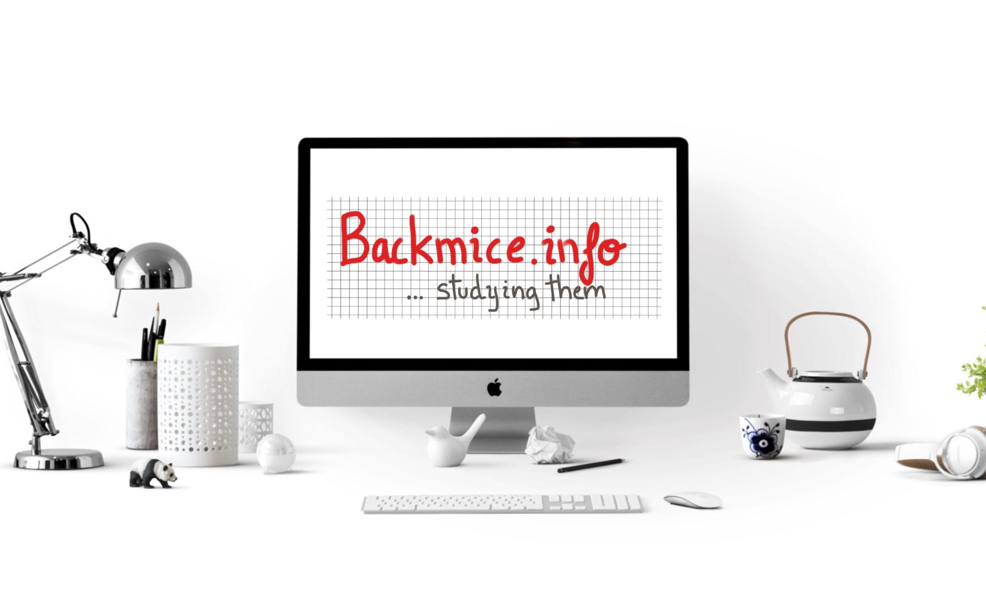 backmice.info