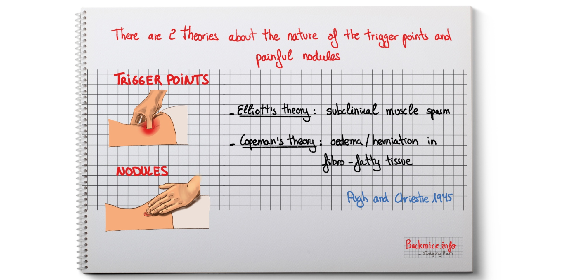 fibrositic nodules and trigger points