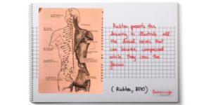 chronischen ruckenschmerzen