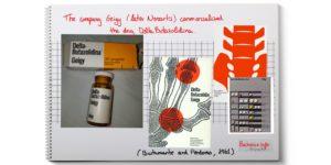 fibrositis lumbar